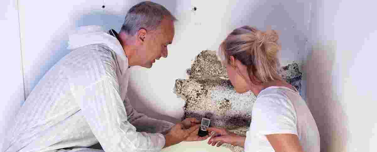 Schimmelbefall auf der Kelerwand - Kellerabdichtung, Bauwerksabdichtung und Bautenschutz
